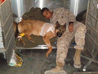 Image: Lucca with Cpl. Juan Rodriguez