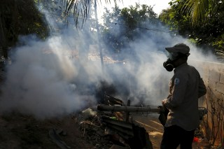 Image: Health worker fumigates a neighborhood as part of the preventive measures against the Zika virus and other mosquito-borne diseases in Veracruz on the outskirts of Panama City