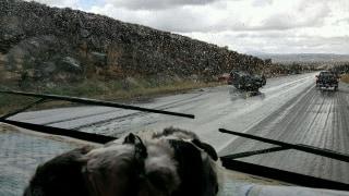 IMAGE: Arizona crash