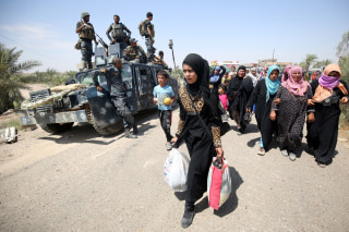 Image: Iraqi families flee from Fallujah