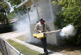 Image: Miami Neighborhood Battles Outbreak Of Zika Virus