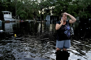 Image: Hermine damage in Florida