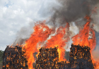 Image: A stockpile of illegal arms  goes up in smoke