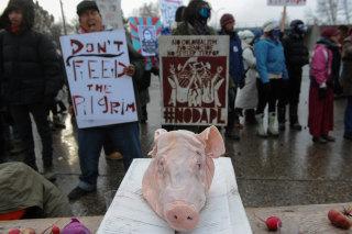 Image: Protesters in North Dakota