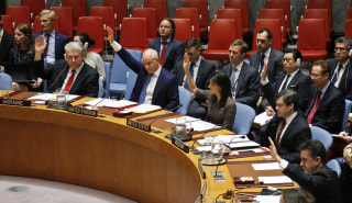 Image: UN Vote