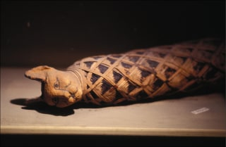 Image: An Egyptian cat mummy