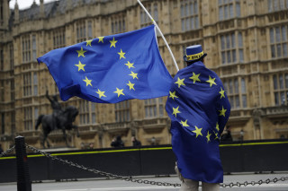 Image: E.U. supporter near the Houses of Parliament