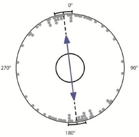 Image: Orientation chart