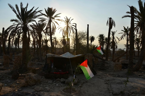 "Palestinian, Israeli and international activists ""re-occupied"" the village of Ein Hijleh in the Jordan Valley in January. The village had lain empty since the Israeli occupation in 1967."