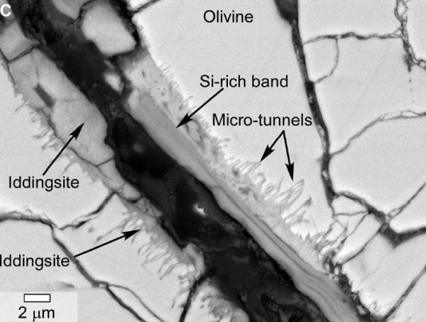Image: Microtunnels