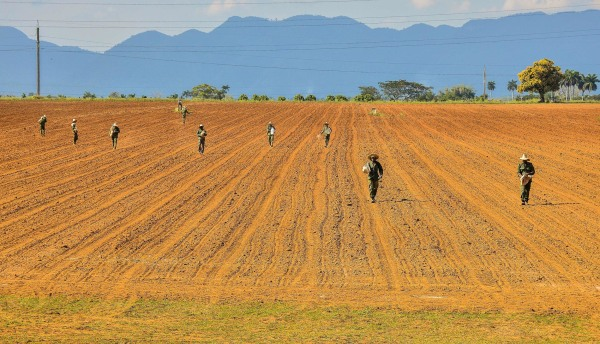 Image: Cuban workers prepare the land to plant tobacco