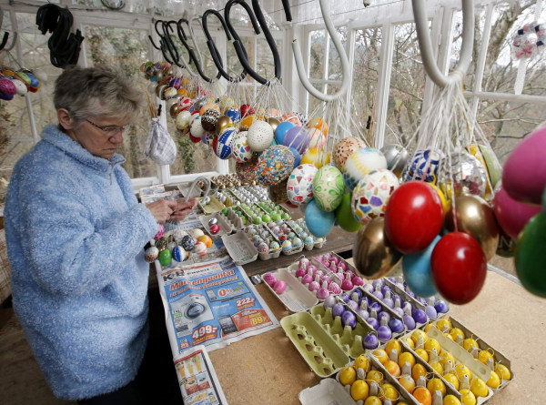Image: German pensioner Kraft compiles Easter eggs before decorating an apple tree with them in Saalfeld