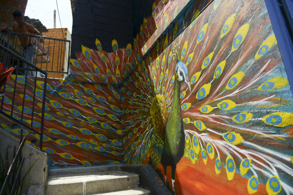"""Image: A young man looks down at a mural that is part of the project """"Medellin is painted for life"""", at Comuna 13 shantytown"""