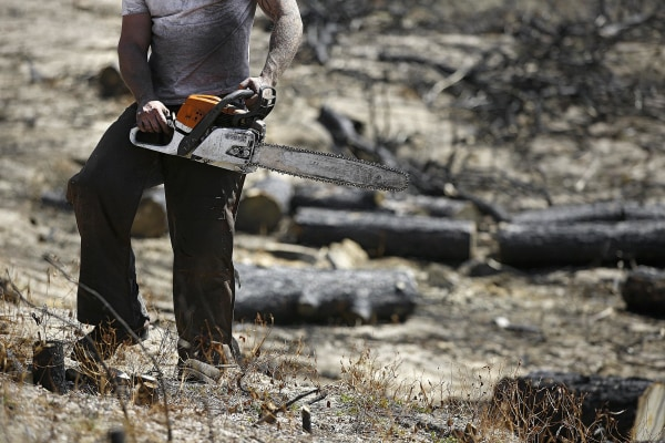 Image: Black Forest Fire aftermath and rebuilding