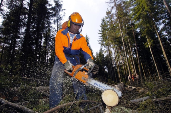 It's dangerous and the pay isn't great. Lumberjack was named the worst job for 2014.