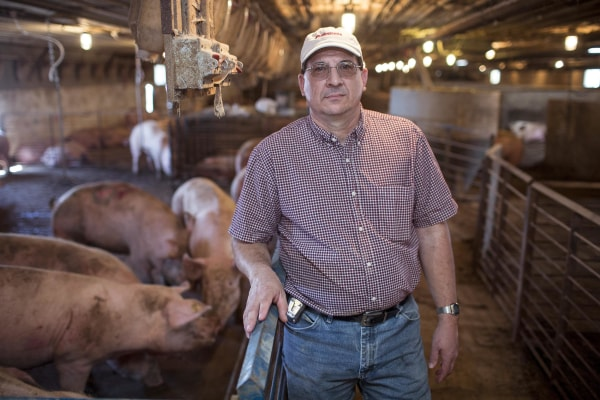 Image: Chuck Wirtz, owner of Riverdale Ranch, on his pig farm