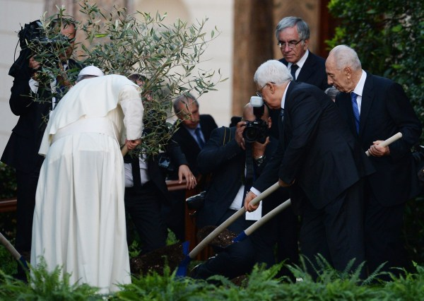 Image: Palestinian leader Mahmoud Abbas (C), Pope Francis (L) and Israeli President Shimon Peres (R) plant an olive tree