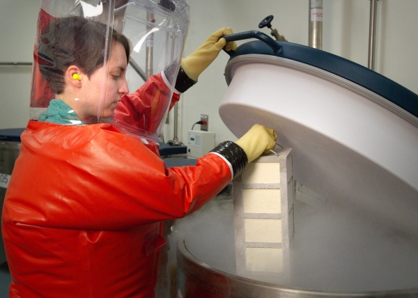 Image: Centers for Disease Control microbiologist and Special Pathogens Branch (SPB) staff member, Dr. Amy Hartman, in the process of inserting a rack of boxes containing biological stocks into a liquid nitrogen freezer where they would be stored in a BSL