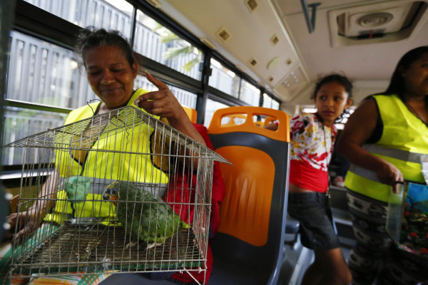 Image: Evicted resident of Tower of David Maria Davila and her parrot Coti sit in a bus which will transport them to their new home in Caracas