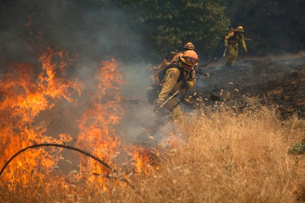 Image: Members of the CAL Fire Vina Helitack crew battle the 'Sand Fire' near Plymouth, California