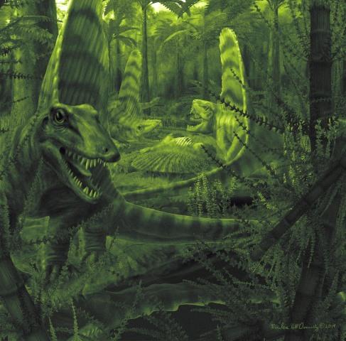 Image: Dimetrodons