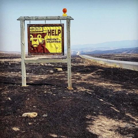 Image: Charred scene at Soda fire in Idaho