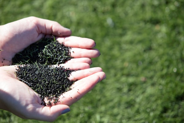 Image: Crumb rubber