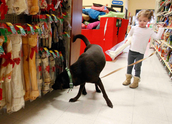 Image: A dog sniffs out some Black Friday deals at a Dallas PetSmart