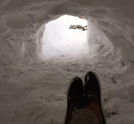 IMAGE: Interior view of Brooklyn igloo