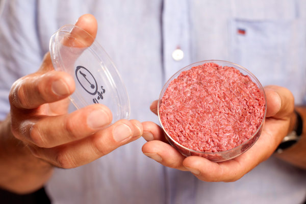 Image: A burger made from Cultured Beef