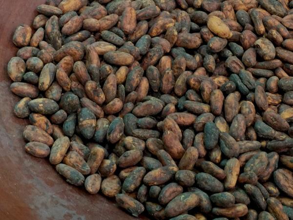 Cacao, Ana Sofía Peláez