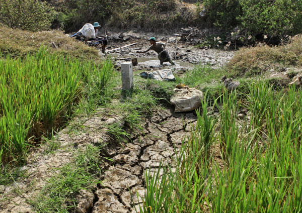 Image: VIETNAM-AGRICULTURE-CLIMATE