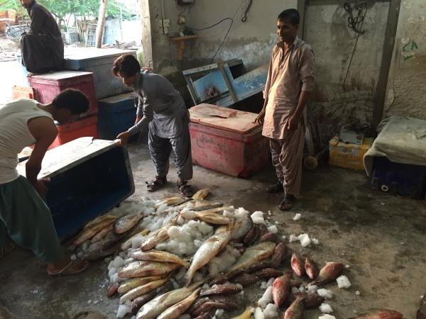 Image: Fishermen in Gwadar