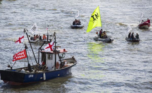 Brexit flotilla sails down Thames