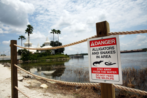 Image: Disney Installs Alligator Warning Signs In Aftermath Of Toddler Death At One Of Its Resorts