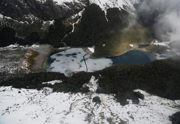 Image: New Zealand wilderness