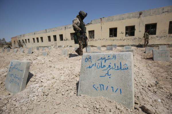 Image: Fallujah