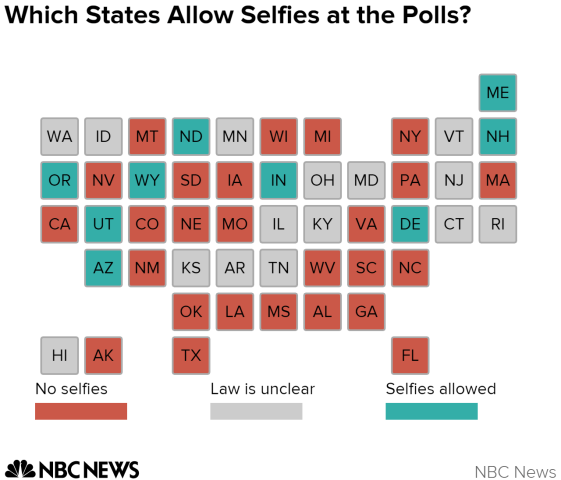 United States appeals court says ban on 'ballot selfies' is unconstitutional