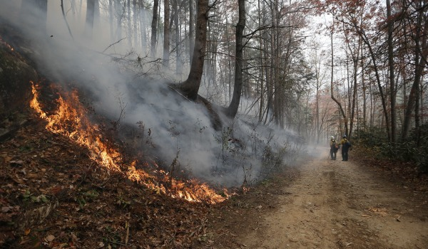 IMAGE: Clayton, Georgia, fire