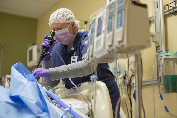 Image: Organ donor