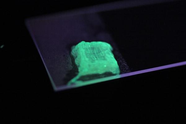 Image: bio-printing