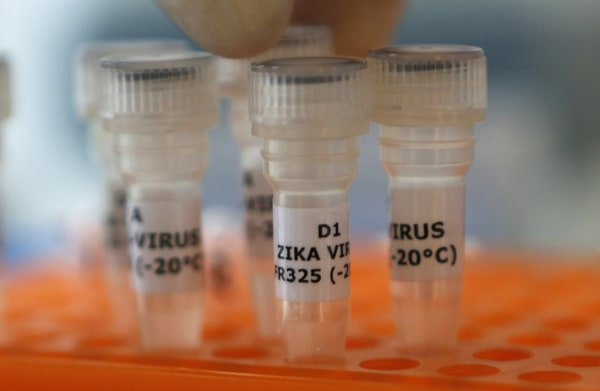 Image: An employee examines tubes with the label 'Zika virus' at Genekam Biotechnology AG in Duisburg