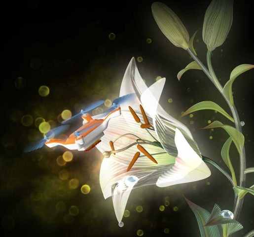 Image: This illustration shows a tiny drone equipped with horsehair and coated with a gel that could be used to pollinate flowers.