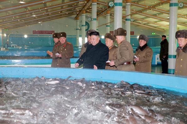 Image: North Korean leader Kim Jong Un visits the Samchon Catfish Farm