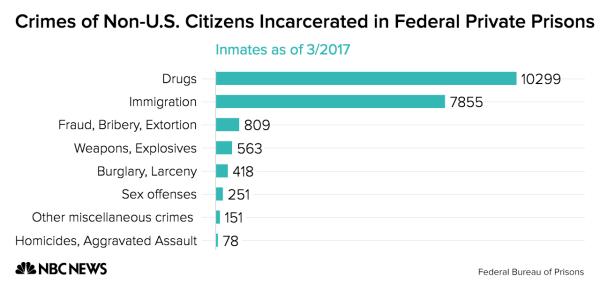 Crimes of Non-U.S. Citizens Incarcerated in Federal Private Prisons