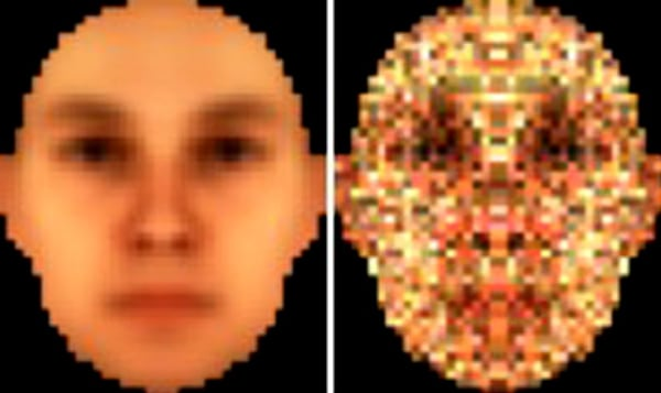 IMAGE: Facial recognition template