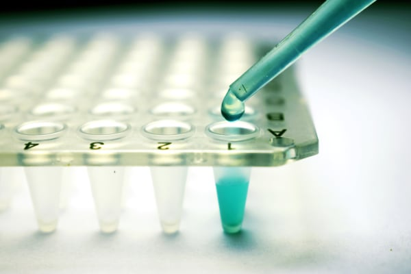 Image: Stem cell research pipette