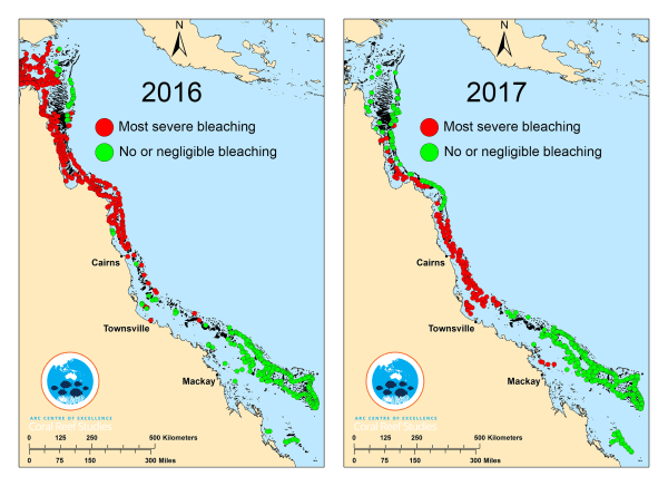 Image: Maps showing the damage to Australia's Great Barrier Reef in 2016 and 2017