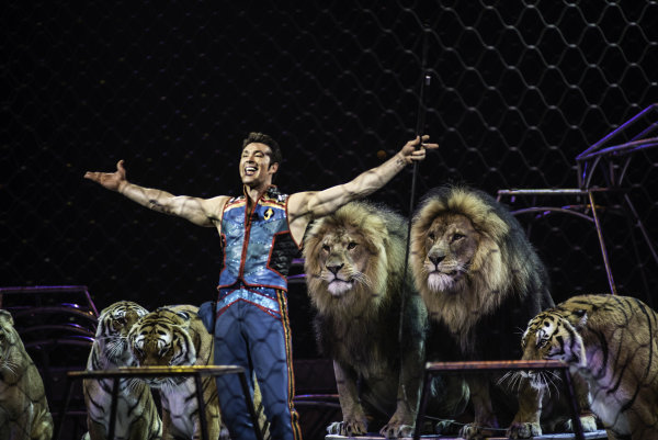 Image: Alexander Lacey  of The Ringling Brothers