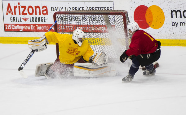 Hockey players of Chinese descent practice during a training camp for China's national hockey team hosted in Toronto.